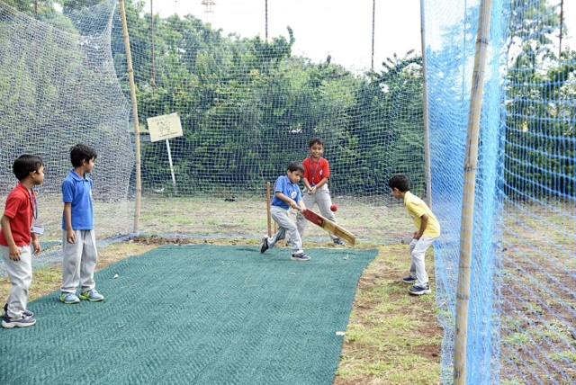 Cricket Session